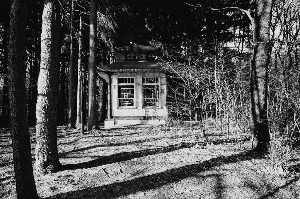 Teehaus im Wald