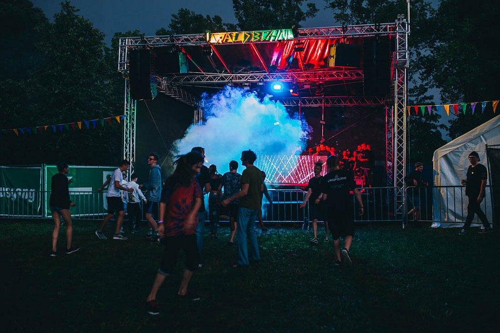 2017 - Waldrauschen Festival